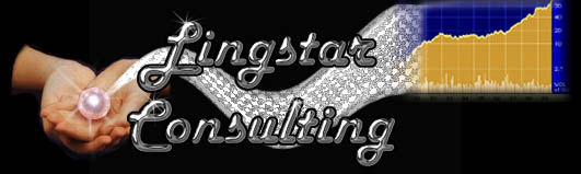Lingstar Advertising and Business Consulting Services based in Central NJ.  High visibility website design, internet mar